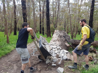 LDTR February Trail Builds 2018