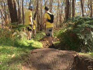 Aneurysm - Trail Closed this Saturday 6th April