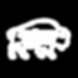 Rio Buffalo Logo White Website.png