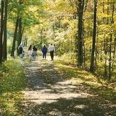 Walnutport Trail.png