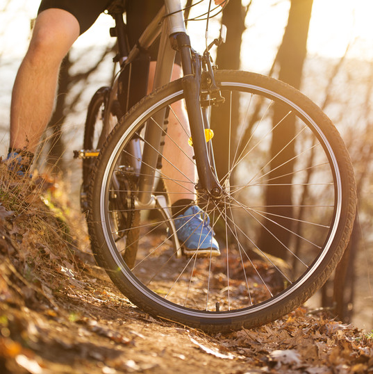 graphicstock-closeup-of-cyclist-man-legs-riding-mountain-bike-on-outdoor-trail-in-autumn-forest_HCZQ-jgn-b.jfif