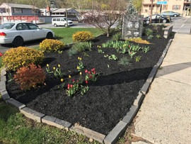 New mulch bed 2.jpg