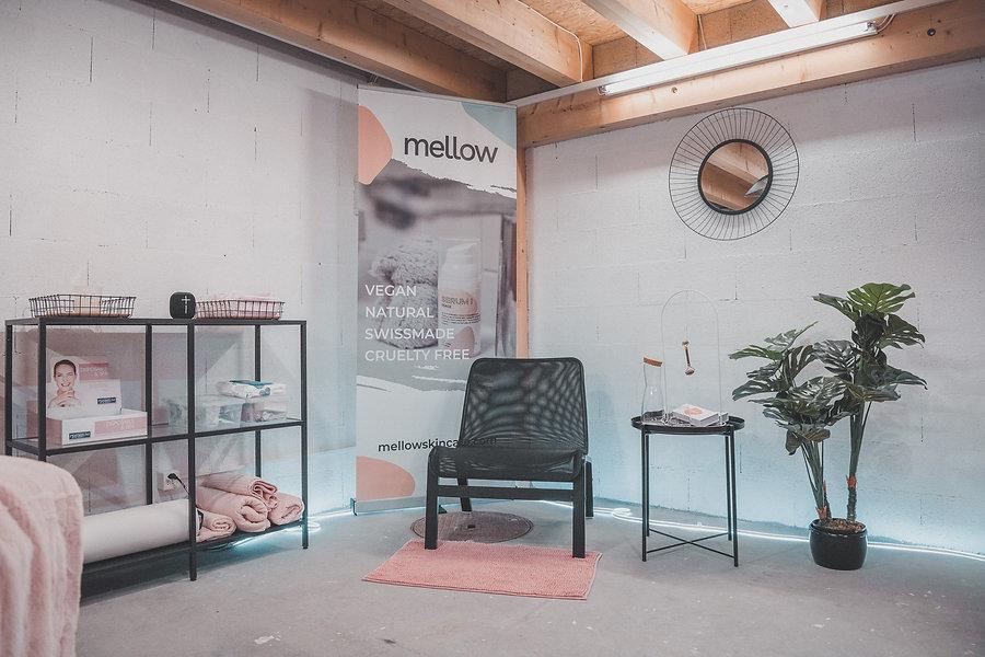 20201118006_institut_mellow_web.jpg
