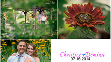 Featured Engagement Photo Shoot Highlights for the Engagement Season!