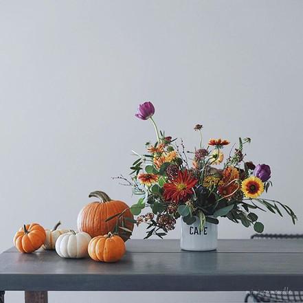 ❄︎_._Hi there, Mr. Pumpkin‼︎_It's nice t