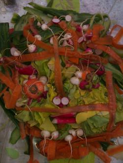 portrait de légumes