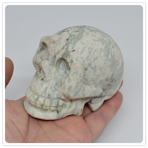 Tree Agate Skull