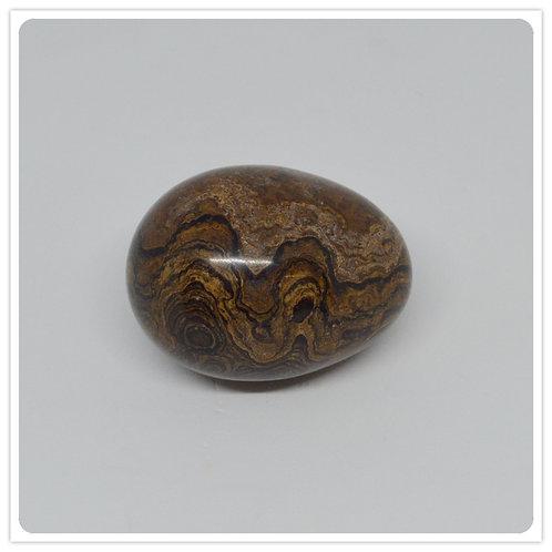Gemstone Egg - Stromatolite