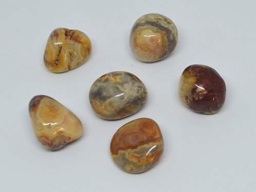 Crazy Lace Agate Tumbles small