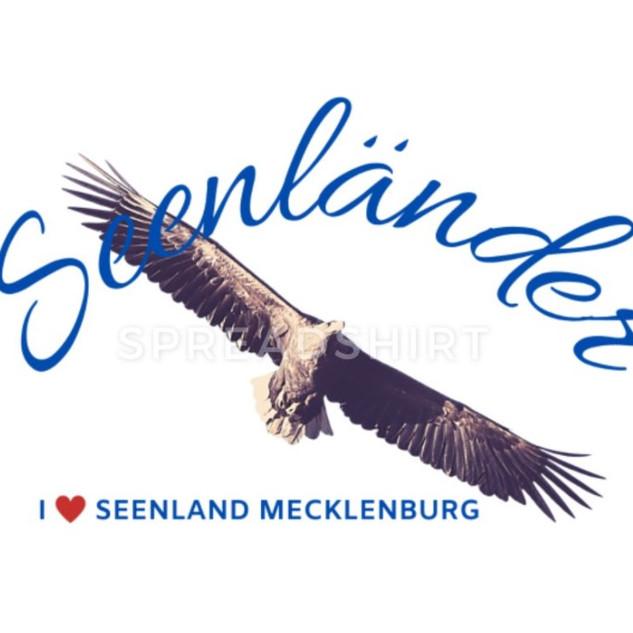 Seeadler Seenland.jpg