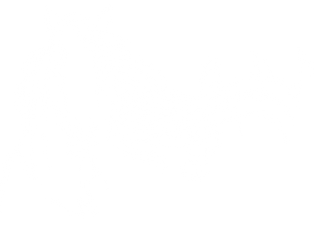 HH Stables-HorseHead-White.png
