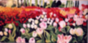 BB copy tulips.jpg