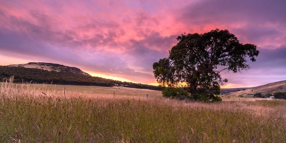 Glenmore Sunset