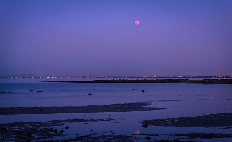 Blood Moon Dawn