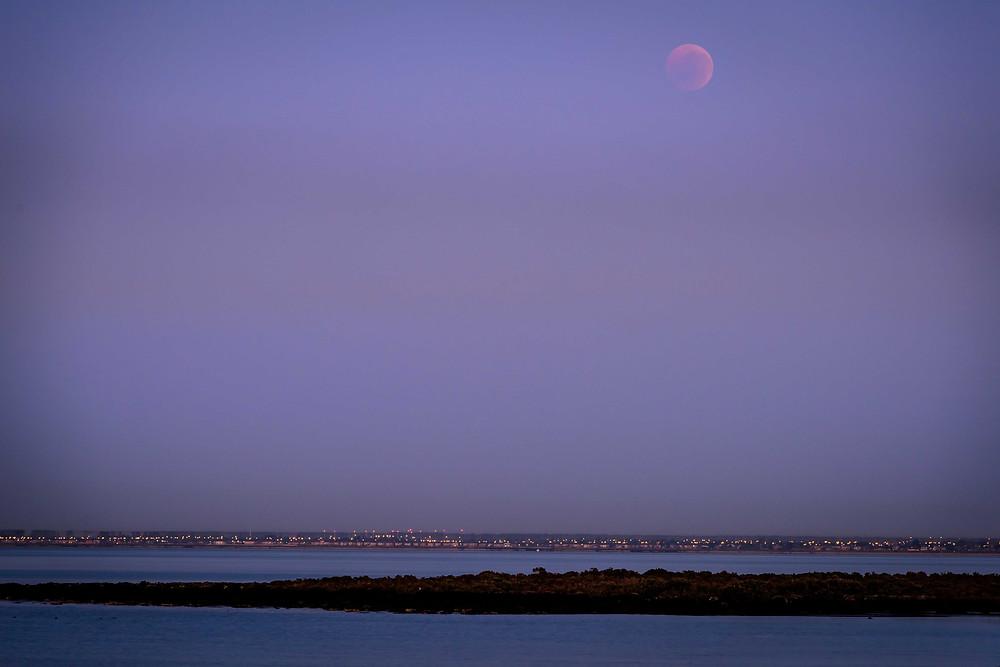 Blood Moon in the Dawn Sky