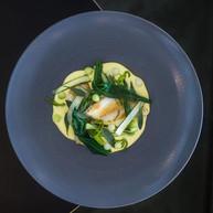 Doversole - Wild Garlic - Potato Mousse