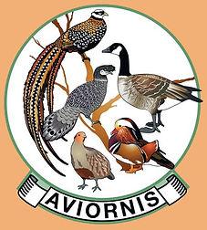 logo Aviornis couleur_bord vert_4 cm.jpg