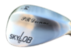 skylob-backface-view_clipped_rev_1.png