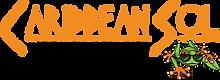 CSol-New-Logo-WEB.png