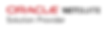 O-NetSuite-SolutionProvider-horiz-cmyk.p