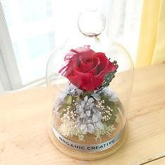 preservedflower.jpg