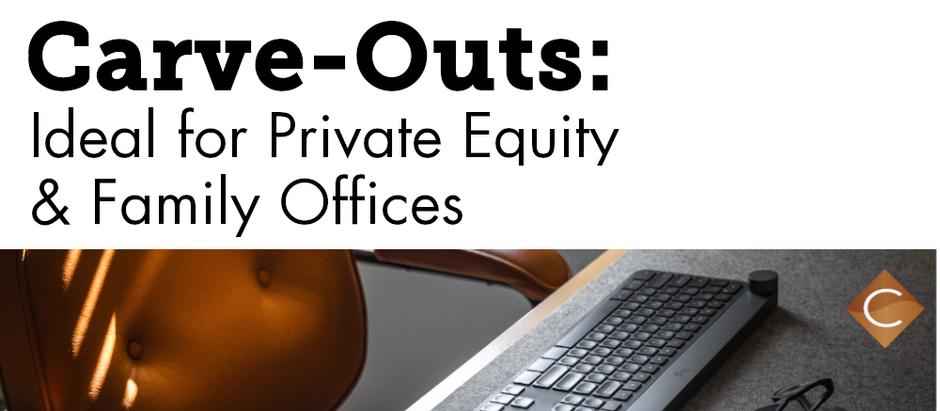 Why Carve-Outs are Ideal for Private Equity, Family Offices