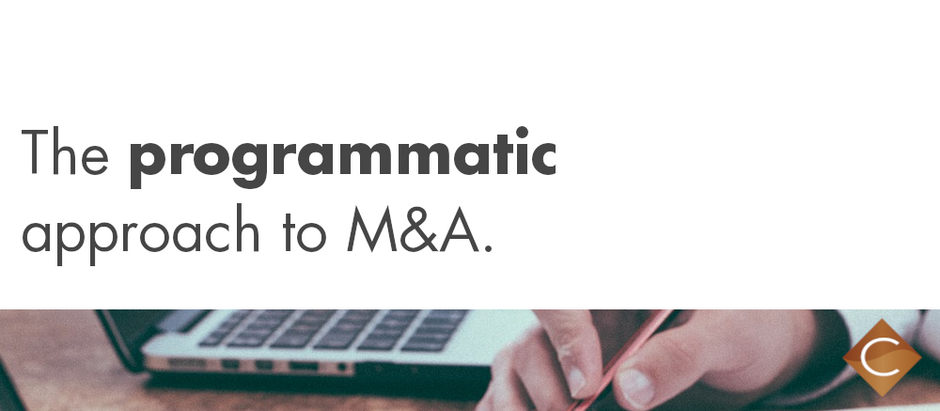 The Value of Programmatic M&A