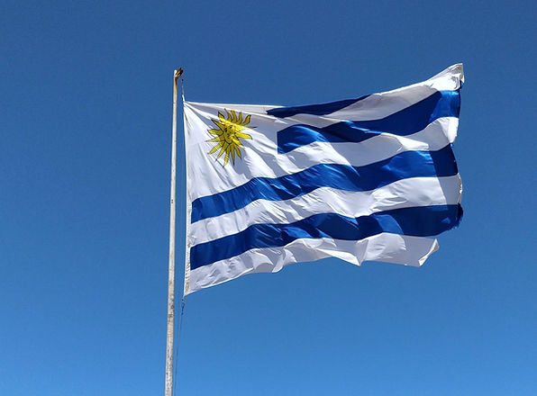 blue%2520and%2520white%2520flag%2520on%2