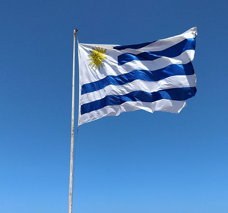 blue%20and%20white%20flag%20on%20pole%20