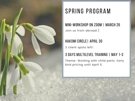 Hakomi Norway Winter/Spring program 2020