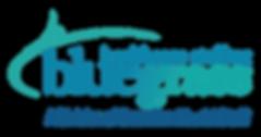 thumbnail_BHS-Lockup-Logo.png
