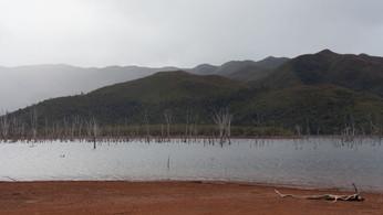 Parc de la Rivière Bleue, New Caledonia, July 2017