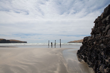 Okains Bay, Akaroa, South Island, New Zealand, February 2017