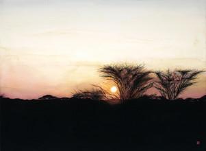 Memories of the Serengeti