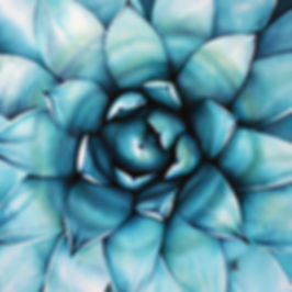 Deliciously Turquoise_Renee Lippa.jpg