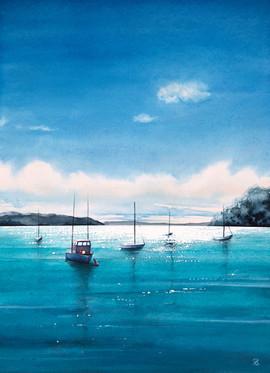 Sailboat Dreams