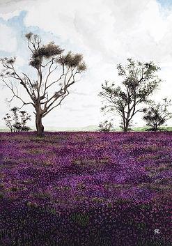 flowers, trees, prairies, landscape