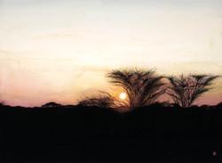 """Memories of the Serengeti 22""""x30"""""""