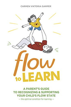 Flow To Learn