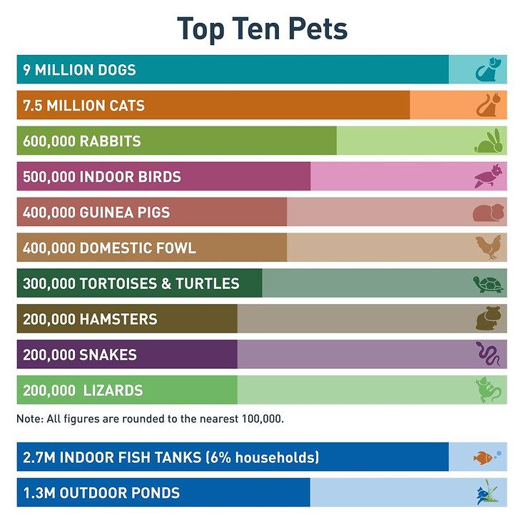 top ten pets.jpg