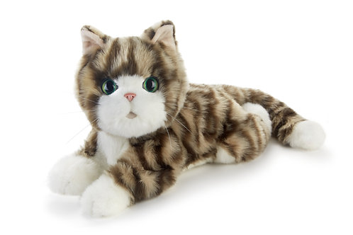 Cookies Plush Kitten