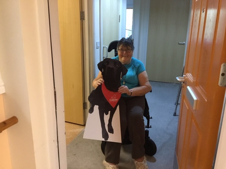 Providing alternatives to Pet Therapy visits during COVID-19