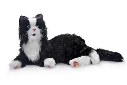 Tuxedo Plush Cat