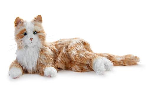 Ginger Biscuit Plush Cat