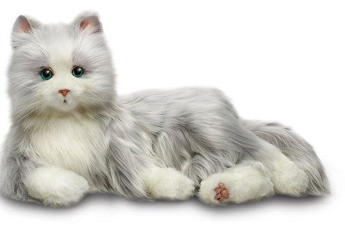 Silver & Grey Plush Cat