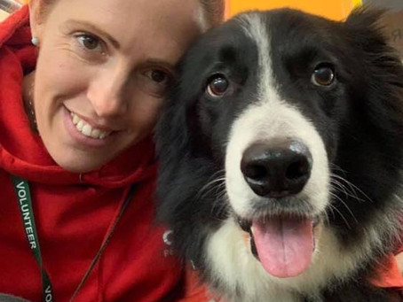 New Therapy Dog teams required for Cardiff!