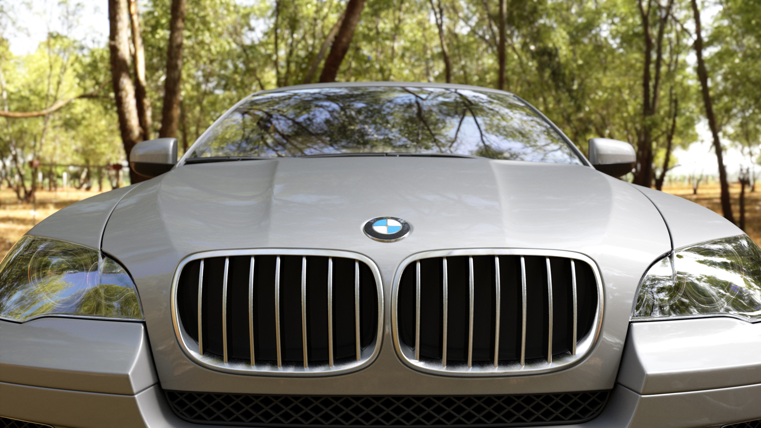 Front_bmw