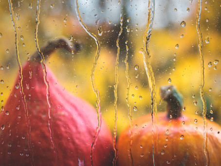 Grief, Gratefulness, Gatherings – The Many Challenges of Thanksgiving