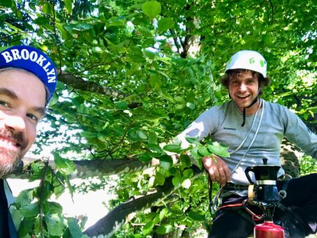 Mikroabenteuer Baumklettern – Ein Kletterabenteuer um die Ecke. Ab auf die Bäume!