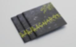 Free_Square_Brochure_Mockup_02.png